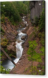 Canyon Stream Acrylic Print by Mike Reid