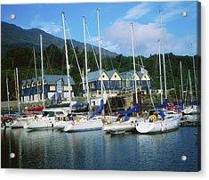 Carlingford Marina, Carlingford, County Acrylic Print by The Irish Image Collection