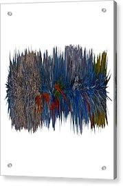 Cat Hair Ball Acrylic Print by Robert Margetts