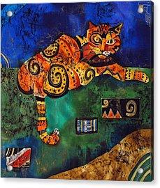 Cat Acrylic Print by Sandra Kern