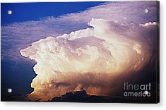 Catch The Wave Acrylic Print by Paul  Wilford