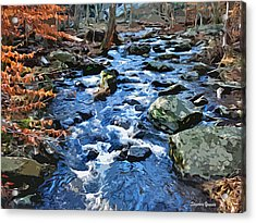 Catoctin Stream Acrylic Print by Stephen Younts