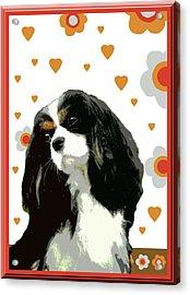 Cavalier King Charles Spaniel Acrylic Print by One Rude Dawg Orcutt