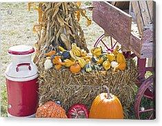 Celebrating Fall Acrylic Print by Wayne Stabnaw