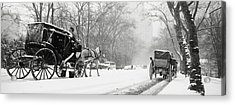 Central Park In Falling Snow Acrylic Print by Axiom Photographic