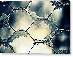Chainlink Fence Acrylic Print by Joana Kruse