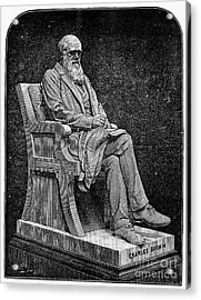 Charles Darwin (1809-1882) Acrylic Print by Granger