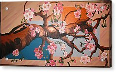 Cherry Blossoms Acrylic Print by Sylvia Wanty
