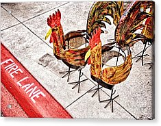 Chicken Crossing Acrylic Print by Ken Williams