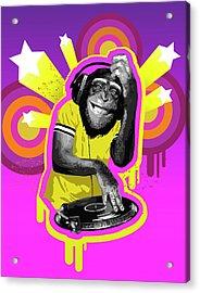 Chimpanzee Dj Acrylic Print by New Vision Technologies Inc
