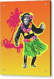 Chimpanzee Hula Dancing Acrylic Print by New Vision Technologies Inc
