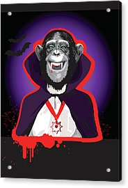 Chimpanzee In Dracula Costume Acrylic Print by New Vision Technologies Inc