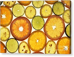 Citrus Slices Acrylic Print by Photo Researchers