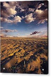 clean Dirt Acrylic Print by Phil Koch
