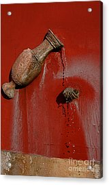 Clean Hands Happy Hands Acrylic Print by Nicola Fiscarelli