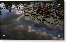 Clouded Pond Acrylic Print by Mike Reid