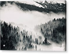 Clouds Moving Through Forest In French Alps Acrylic Print by Philipp Klinger