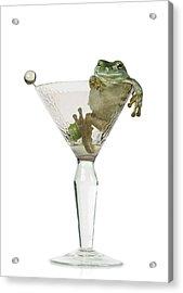 Cocktail Frog Acrylic Print by Darwin Wiggett