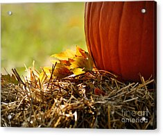 Colorful Autumn Acrylic Print by Nava Thompson