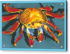 Colorful Crab With Border Acrylic Print by Stephen Anderson