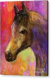 Colorful Impressionistic Pensive Horse Painting Print Acrylic Print by Svetlana Novikova
