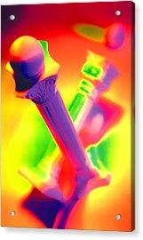 Columns  Acrylic Print by Mauro Celotti