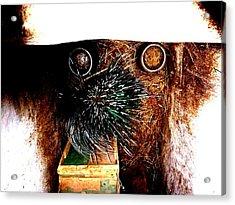 Comic Dog Acrylic Print by ThiART ThiART