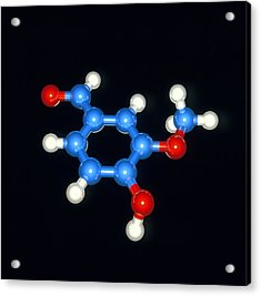 Computer Model Of A Molecule Of Vanillin Acrylic Print by Laguna Design