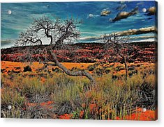 Coral Dunes Acrylic Print by Benjamin Yeager