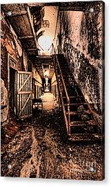 Corridor Creep Acrylic Print by Andrew Paranavitana