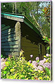 Cottage At Magnolia Plantation Acrylic Print by Mindy Newman