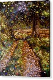 Country Lane Acrylic Print by John  Nolan