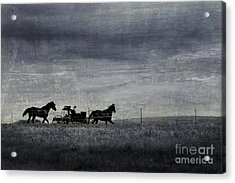 Country Wagon Acrylic Print by Perry Webster