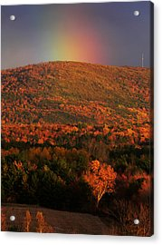 Coveted Gold Acrylic Print by Natalie LaRocque