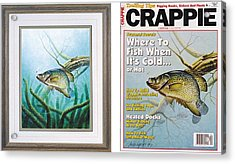 Crappie And Coon Tail Cover Acrylic Print by JQ Licensing