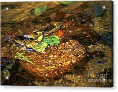 Creekside Acrylic Print by Sharon Talson