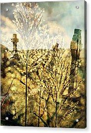 Creepy Acrylic Print by Marty Koch