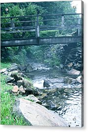 Cross The Stream Acrylic Print by Debra     Vatalaro