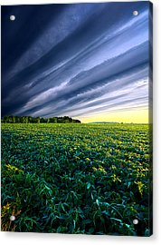 Crossing Over Acrylic Print by Phil Koch