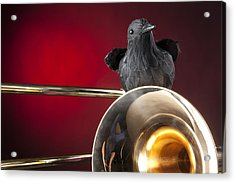 Crow And Trombone On Red Acrylic Print by M K  Miller