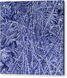Crystal 2 Acrylic Print by Sabine Jacobs