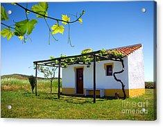 Cute House Acrylic Print by Carlos Caetano