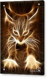 Cute Little Kitten Acrylic Print by Pamela Johnson