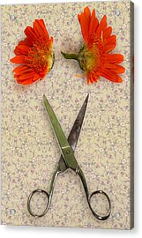 Cutting Flowers Acrylic Print by Joana Kruse