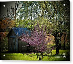 Daddys Old Shed In The Spring Acrylic Print by Joyce Kimble Smith