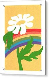 Daisy's Rainbow Acrylic Print by Terry Taylor