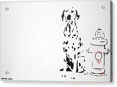 Dalmatian Acrylic Print by Michael Ringwalt