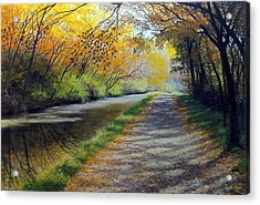Dappled Autumn Light Acrylic Print by David Bottini
