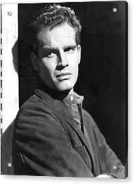 Dark City, Charlton Heston, 1950 Acrylic Print by Everett