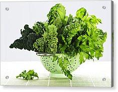 Dark Green Leafy Vegetables In Colander Acrylic Print by Elena Elisseeva